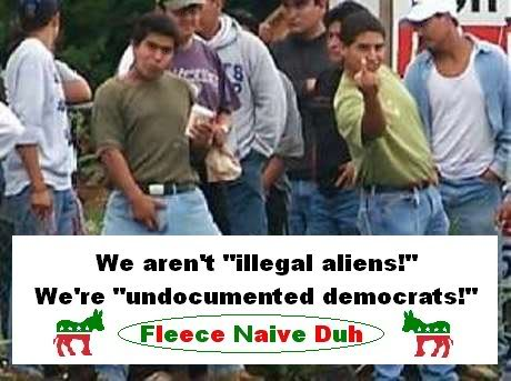 illegals vote democrat